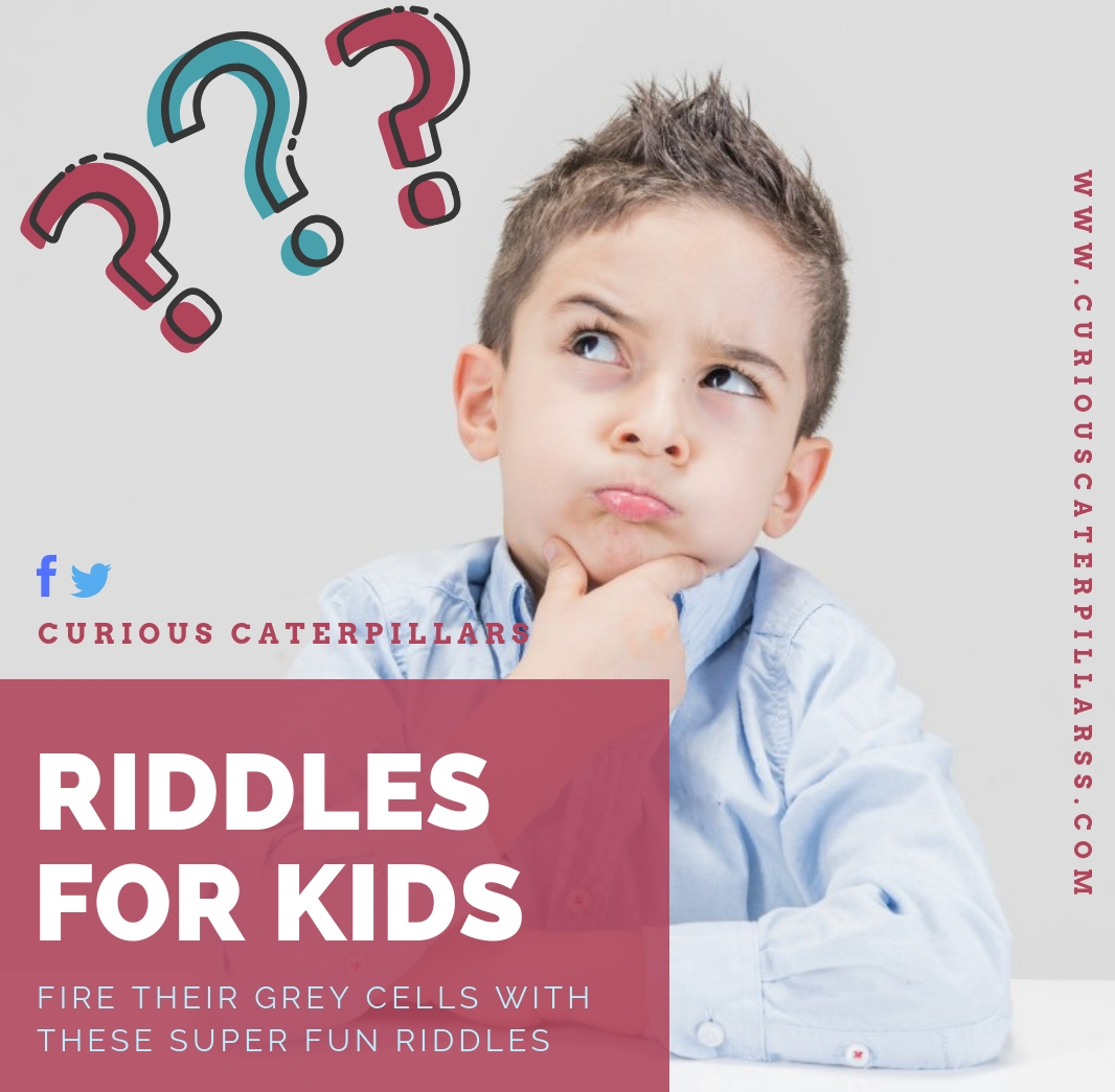 Riddles, riddles for kids