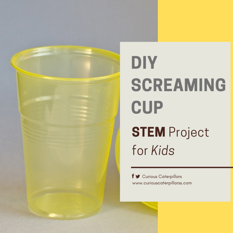 Screaming Cup STEM project