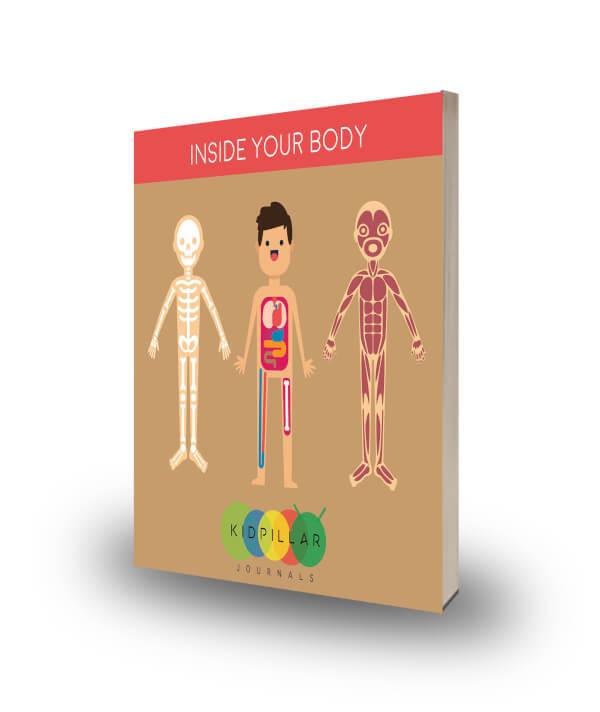 skeleton for kids