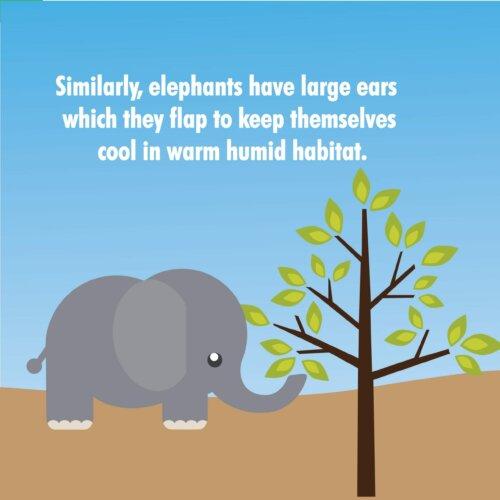 Habitat STEM Book for kids
