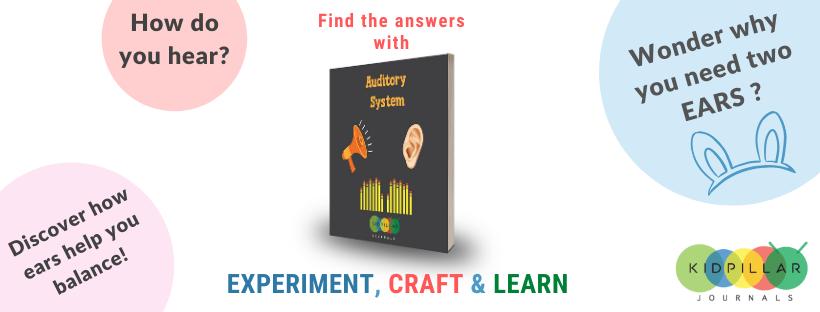 STEM Book for kids