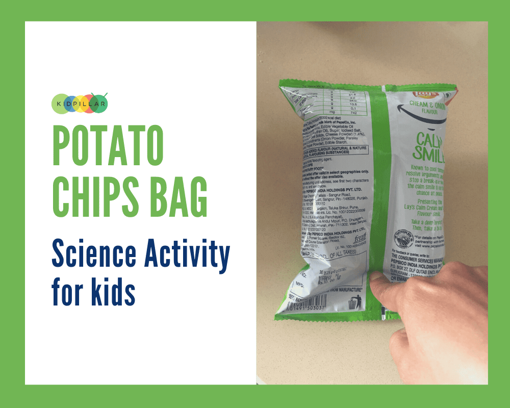 STEM Science Activity for Kids