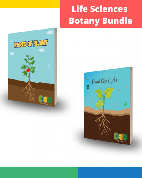 plant science for kids