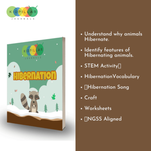 hibernation for kids